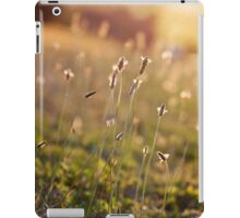 ~ visions of inspiration are never far away ~ iPad Case/Skin