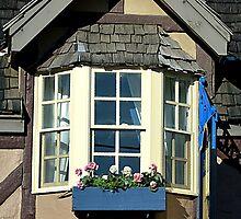 BAY WINDOW by kazaroodie