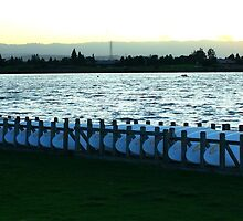 Surfboards resting. Shoreline Park, Mountain View, California 2009 by Igor Pozdnyakov