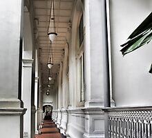 Raffles Hotel by Donna Ingham