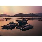 Fishing Boats South Korea by Louise Fahy