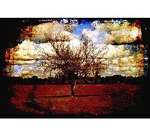 Cumulus Photographic Print