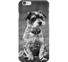 Scruffy the Dog iPhone Case/Skin