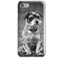 Scruffy the Dog iPhone Case/Skin
