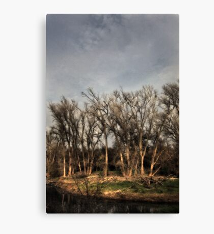 Don't Cry For Me Canvas Print