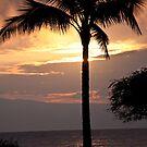 Maui Sunset by Tina Blum