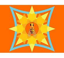 Bee, sun & flower Photographic Print