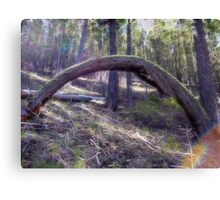 Under the Enchanted Arch Canvas Print