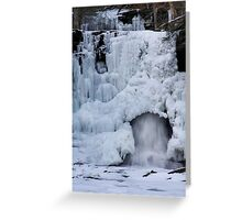 Sheldon Reynolds Falls in Winter Greeting Card