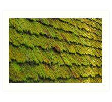 Mossy Wood Shingles Art Print