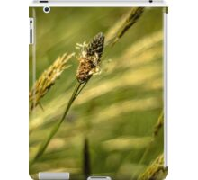 Wonderful Grass iPad Case/Skin
