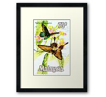 Malaysia Butterfly Print Framed Print