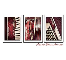 Altimoro Baleani Photographic Print