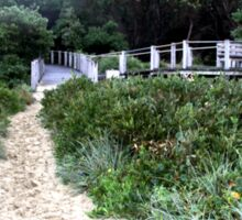 Beach Path Sticker