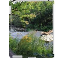 A Summer Day at the Creek iPad Case/Skin