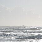 La nave dei folli by VperVioletta