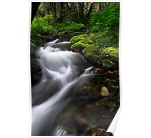 Little Lupin Creek Flow Poster