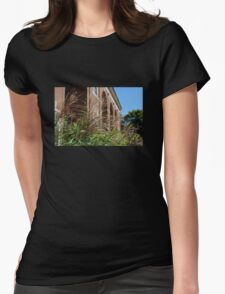 Ornamental Grass and a Building Womens Fitted T-Shirt