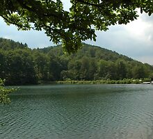 Lake view by wolfbubble