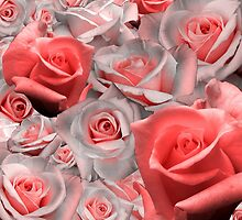 Pink & White Rose Cluster (Possible Valentine) by Make-It-Mico