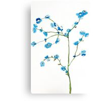 Blue Cherry Blossoms Watercolor Canvas Print