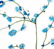Blue Cherry Blossoms Watercolor by zhangart