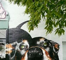 Graffiti Dog! by Roz McQuillan