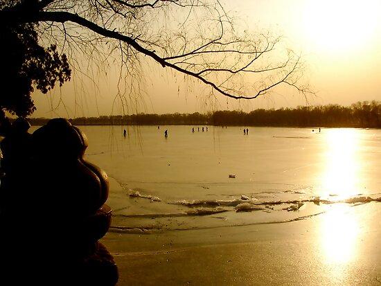 Frozen Sunset by Valerie Rosen