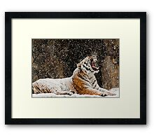 Screaming At The Sky Framed Print