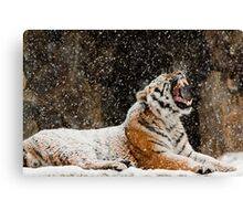 Screaming At The Sky Canvas Print