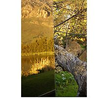 Reflections of Nature vs. Raw Nature  Photographic Print