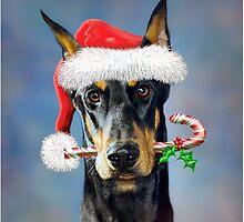 Doberman Christmas by bhymer