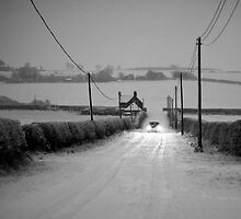 Driving in the Snow by John Nelson