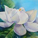 Magnolia by Bobbi Price