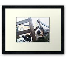 It`s Only Me Framed Print