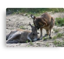 Could I tell you a Secret? Canvas Print