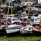 Cornish Harbour by loz788