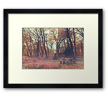 They Will Come Back in Spring Framed Print