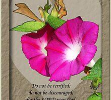 Joshua 1:9 - Morning Glory and Heart by Terri Chandler