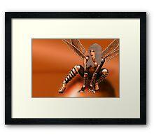 Crouching Drabotfly Framed Print