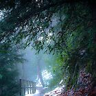 Mystical pathway, Dalkeith Country Park, Scotland by Michael Marten