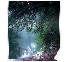Mystical pathway, Dalkeith Country Park, Scotland Poster