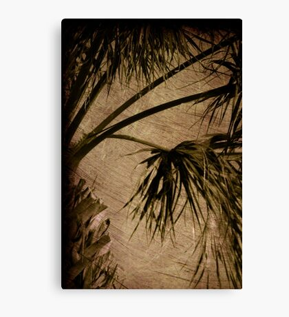 Vintage Palm Canvas Print
