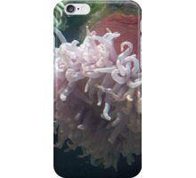 Baltimore Aquarium Series 16 iPhone Case/Skin