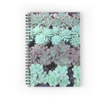 Succulents in rows Spiral Notebook