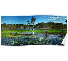 Wetlands Panorama Poster