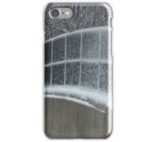Winter Clings to Spring iPhone Case/Skin