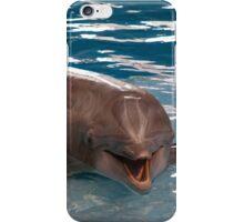 Baltimore Aquarium Series 11 iPhone Case/Skin