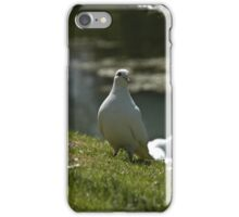 Doves iPhone Case/Skin