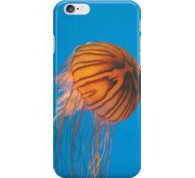 Baltimore Aquarium Series 10 iPhone Case/Skin